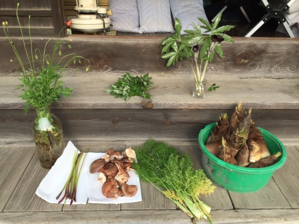 蕗、椎茸、フェンネル、筍、浦島草、、
